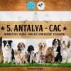 KIF – CAC Antalya  08 MART 2015