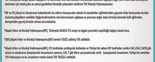 Neden KIF ve FCI …