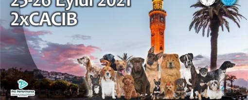 İZMİR 2021 CACIB YARIŞMALARI / IZMİR CİTY 2021 DOUBLE CACIB SHOWS