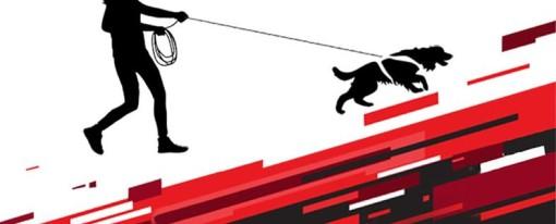 Köpek Eğitmenleri Derneği Mantrailing/ Koku Takibi Sınav takvimi hazırlanmıştır.