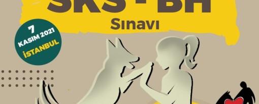 SKS – BH SINAVI
